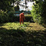 Het op orde brengen van tuin voor woningbouwvereniging in Odijk.